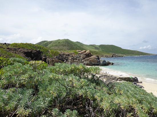 Pinel Island 사진