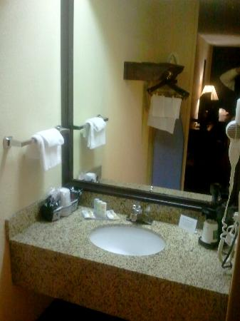 Quality Inn: Sink Area