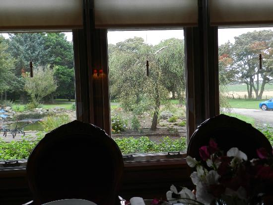 Sandhill House: View from Breakfast Room