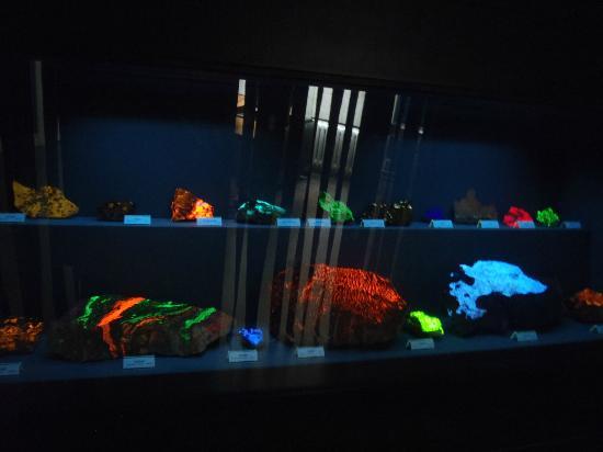 Naturhistoriska riksmuseet: fluorescent