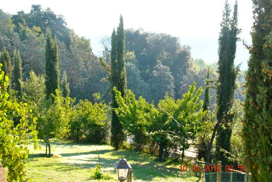 Torraccia di Chiusi: view from room 6