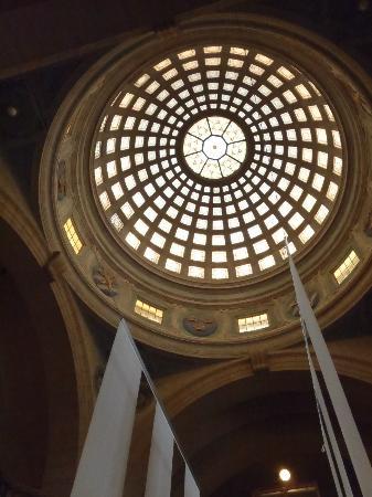 Museo Sueco de Historia Natural: ceiling