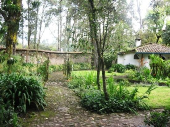 Hacienda Cusin: Cusin