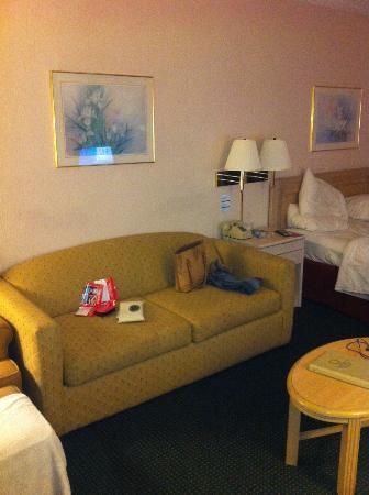Continental Plaza Hotel: sofá cama