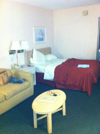 Continental Plaza Hotel: Cama + sofá - cama