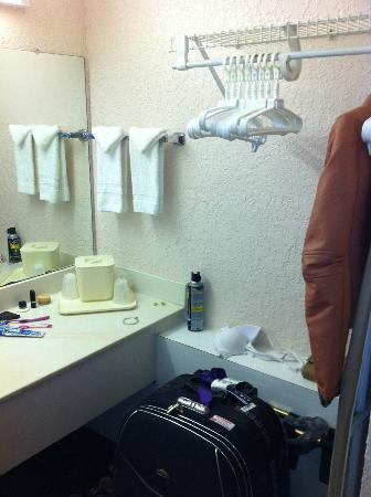 Continental Plaza Hotel: banheiro