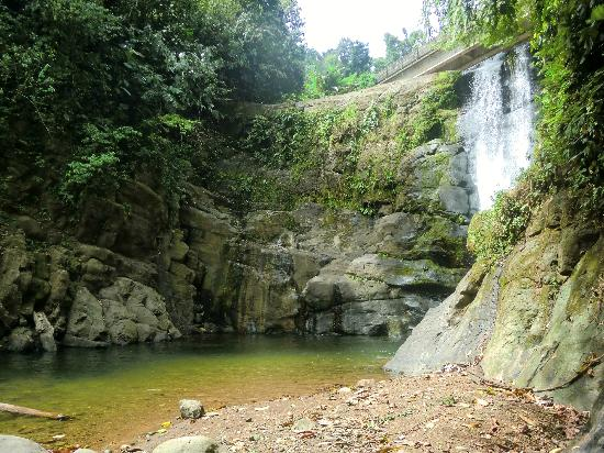 Gecko Trail Adventures Animal Rescue Centre, Chocolate Lady and Waterfall Tour: heavenly