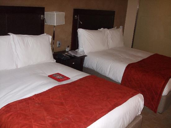 Southern Sun O.R Tambo International Hotel: my room