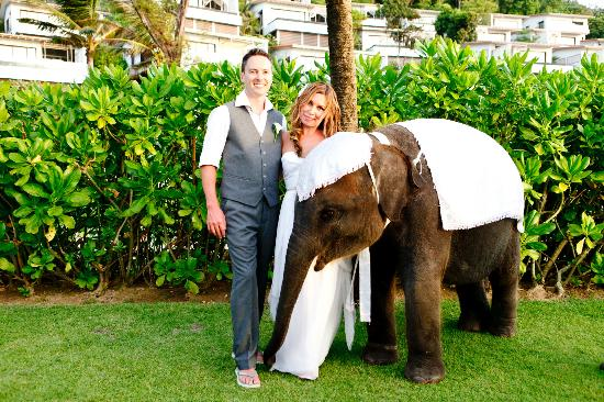 Katathani Phuket Beach Resort: Baby elephant at wedding