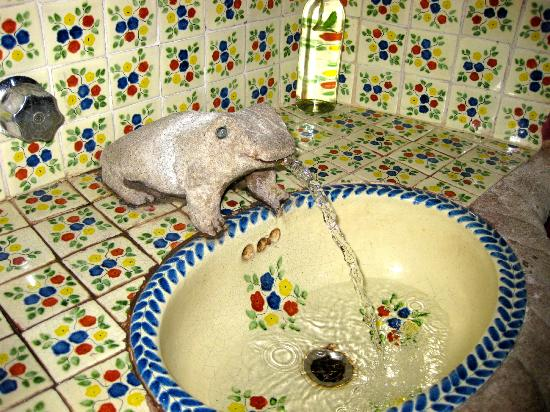 Real de la Esperanza: Ceramic sink with famous Guanajuato frog