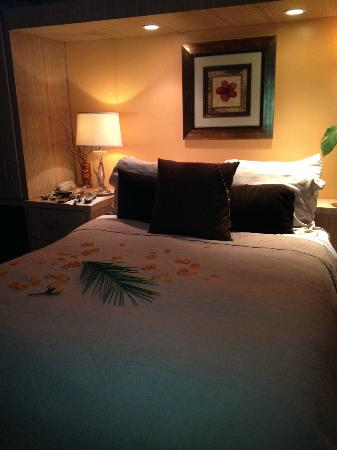 Casa Tropicana: lovely room