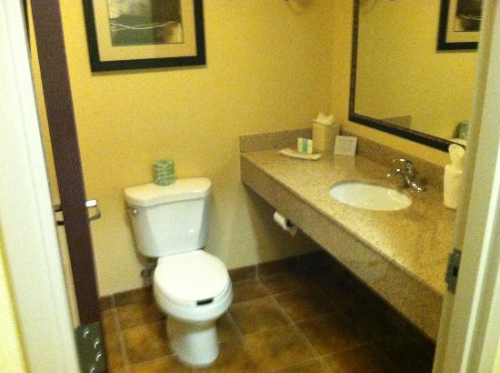 Comfort Suites Wilson I-95: Bathroom