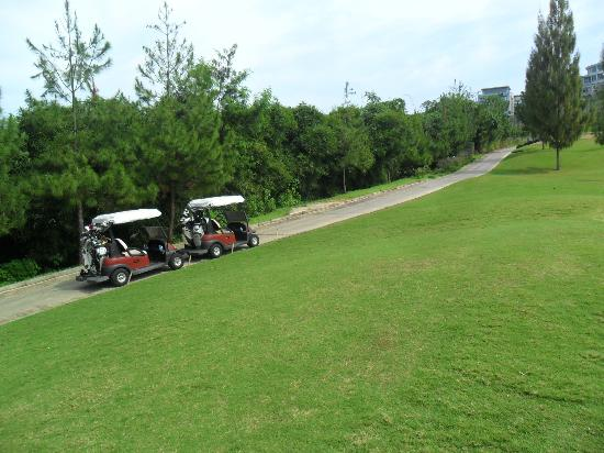 Mountain View Golf Club: Nice golf course