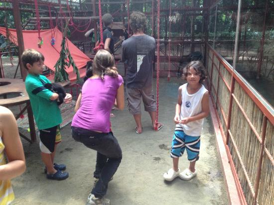 Foundation Jaguar Rescue Center: con los monos