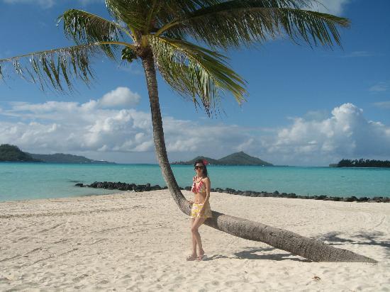 Bora Bora Pearl Beach Resort & Spa: Resting on a palm