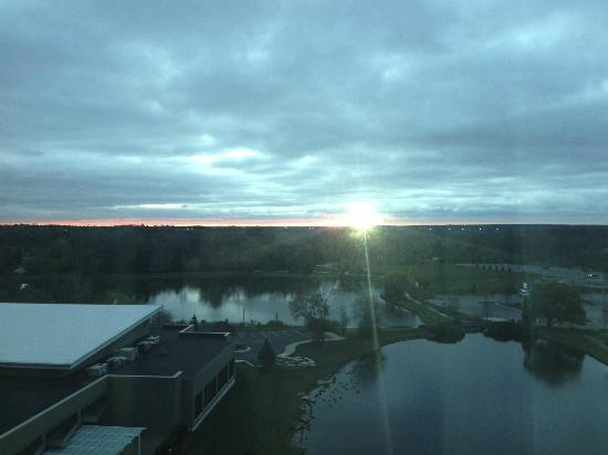 Chicago Marriott Southwest at Burr Ridge: East view from Burr Ridge Marriott at sunrise :)