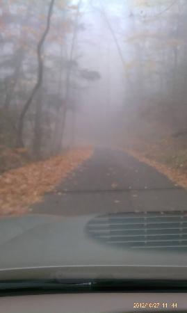 Roaring Fork: kinda foggy the morning we went