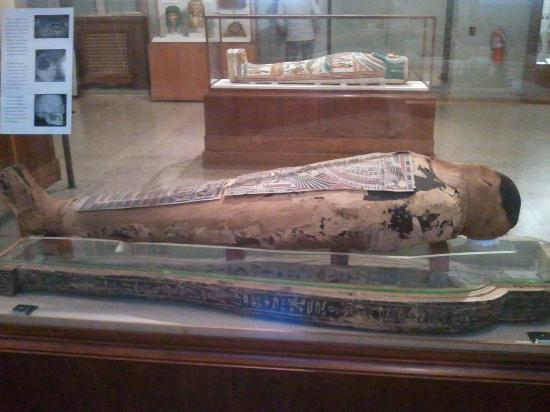 Oriental Institute Museum : Mummified remains of Egyptian