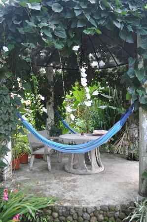 Casa Mariposa照片