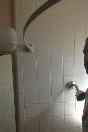 Travelodge Page: Shower head