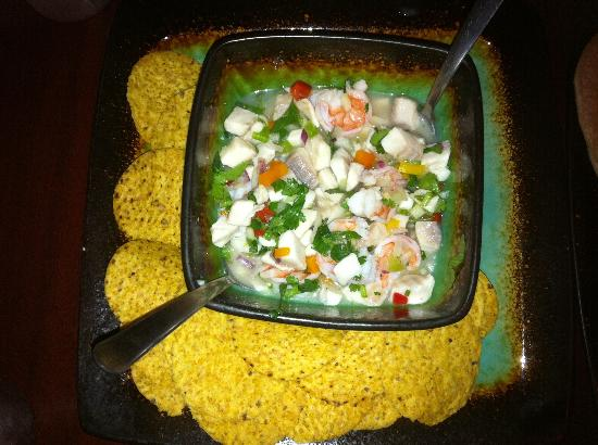 Land and Ocean Costa Rican Restaurant: Best ceviche!!!!!!