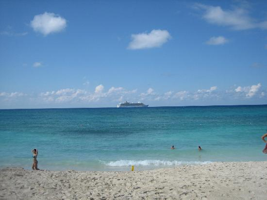 The Reef Atlantis, Autograph Collection: view from paradise beach