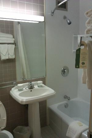 The Norwalk Inn & Conference Center: Plain - good shower