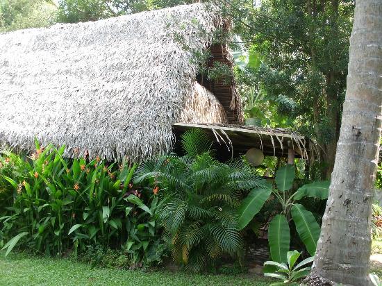 Yelapa Oasis: Nuestra habitación 