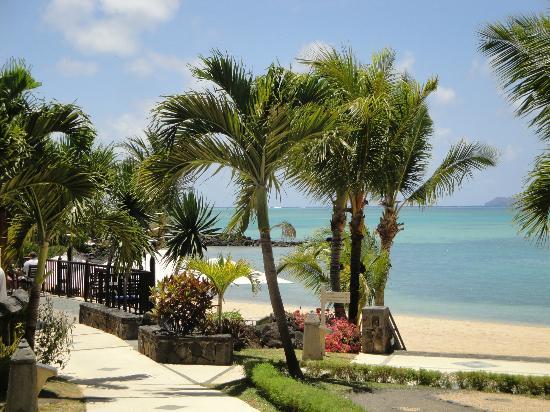 LUX* Grand Gaube: Pool & Beach Area