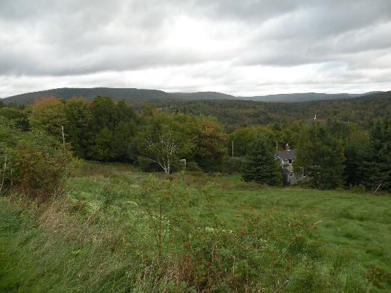 Chanterelle Inn & Cottages: View from grounds into the hills