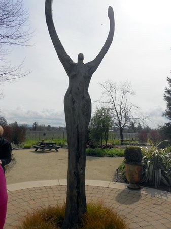 DeLoach Vineyards: On our tour