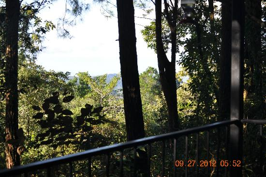 Tinamou Cottages: patio view