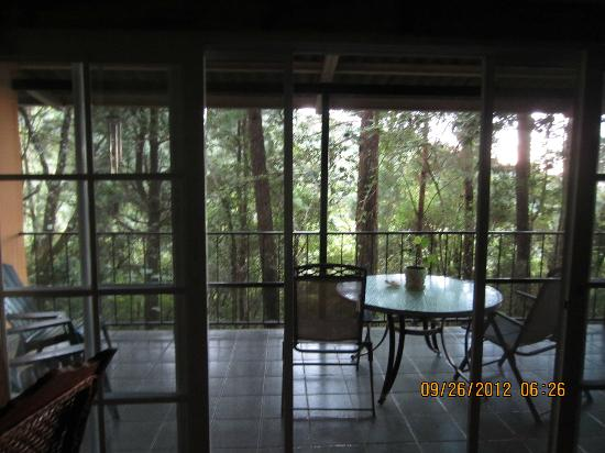 Tinamou Cottages: patio - great for birding, reading, relaxation