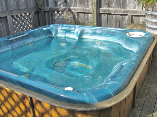 Amber Court Motel: Relax in the Spa pool