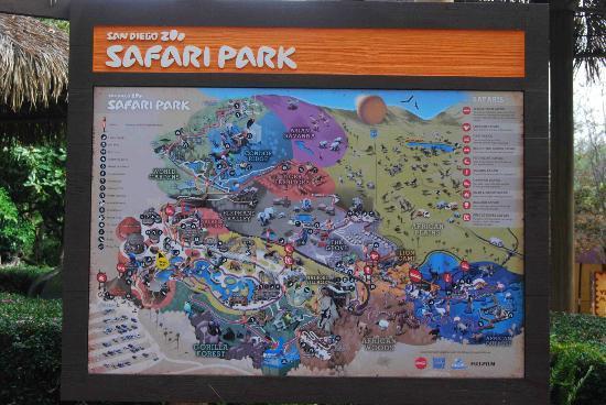 Park Map Picture Of San Diego Zoo Safari Park Escondido - San diego zoo map