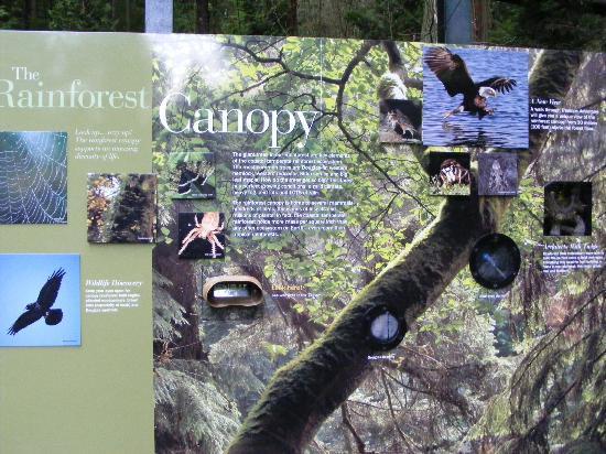 Capilano Suspension Bridge Park: One of the information displays at the bridge