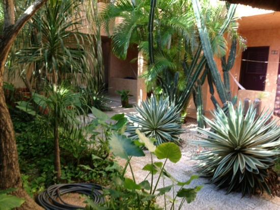 Barrio Latino Hotel: Garden at Barrio latino
