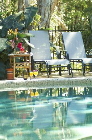 Clifton Beach Retreat: Relaxing by the pool