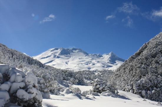 Powderhorn Chateau Mount Ruapehu: Turoa Skifield