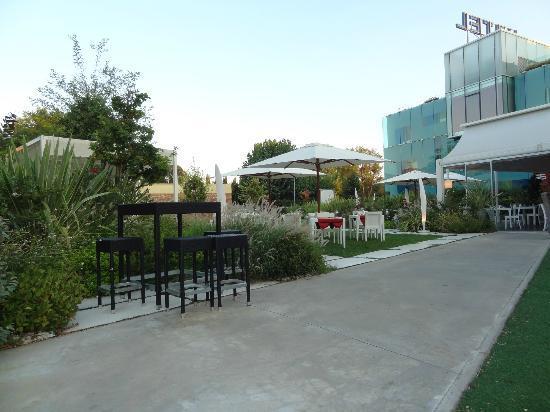 Hotel San Ranieri: Garden and bar