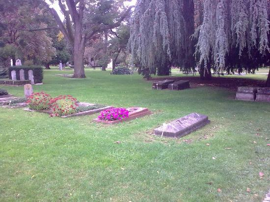 Cimetiere de Plainpalais: Lawns and shady trees