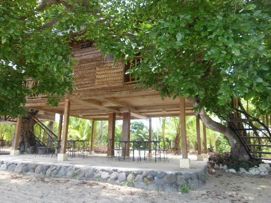 Laiya Coco Grove Resort: Still the treehouse :)