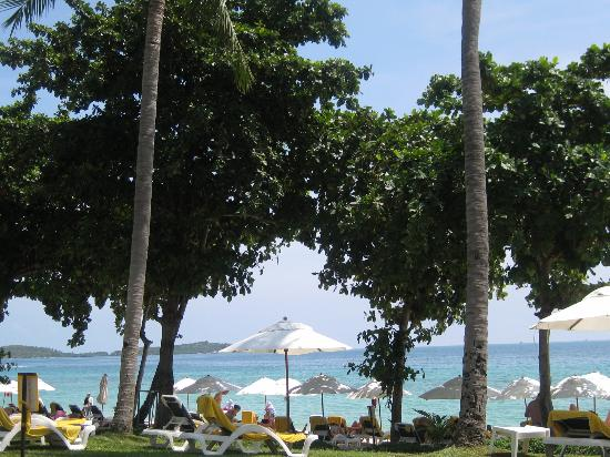Centara Grand Beach Resort Samui: beach area