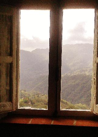 Casa Verde Holiday Accommodation & B&B: View from window