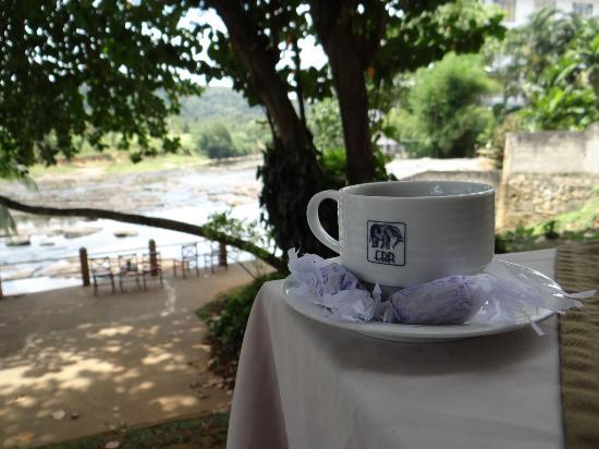 هوتل إليفانت بارك: The outdoor dining area from where you have a clear view of the river