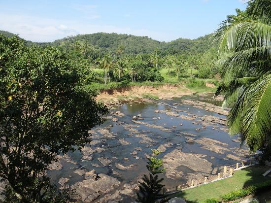 โฮเต็ล เอเลแฟ้นท์ เบย์: View from my room balcony - this is the river they bring the Pinnawala elephants to bathe in