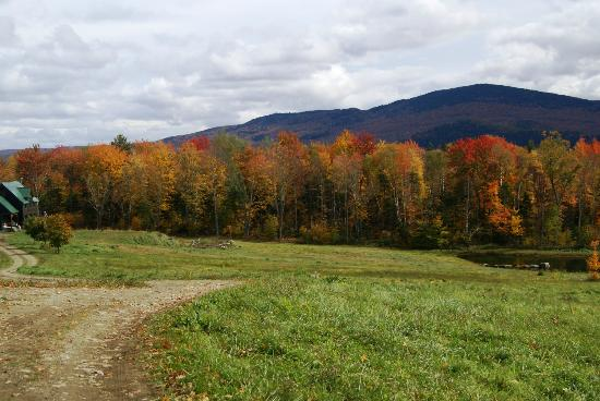 Vermont Icelandic Horse Farm: Vermont in the fall