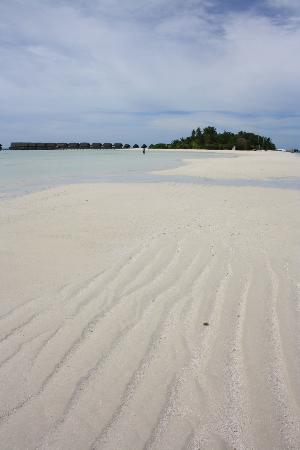 COMO Cocoa Island: The view from the sand bank