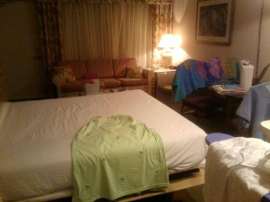 Canada House Beach Club: Room with Murphy bed down
