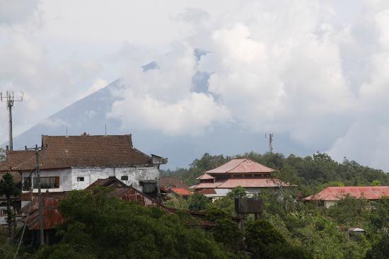 Magilla Bali Tours: Volcano region.